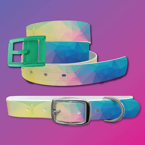 Geometric Belt & Dog Collar Bundle