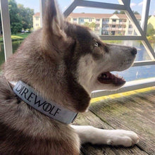 Load image into Gallery viewer, Direwolf Collar