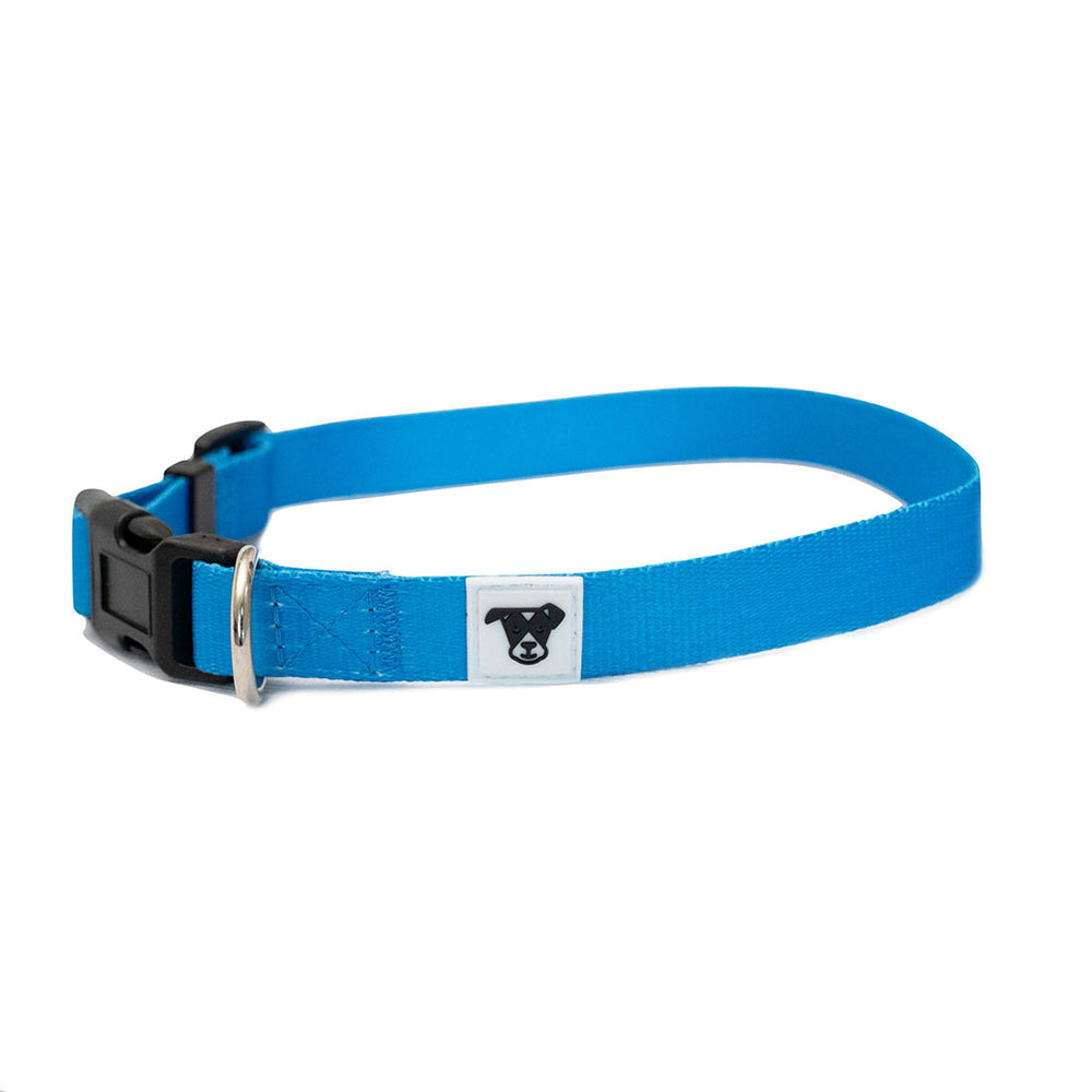 Classic Dogist Collar
