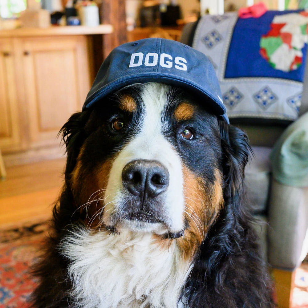 Classic Hat | DOGS