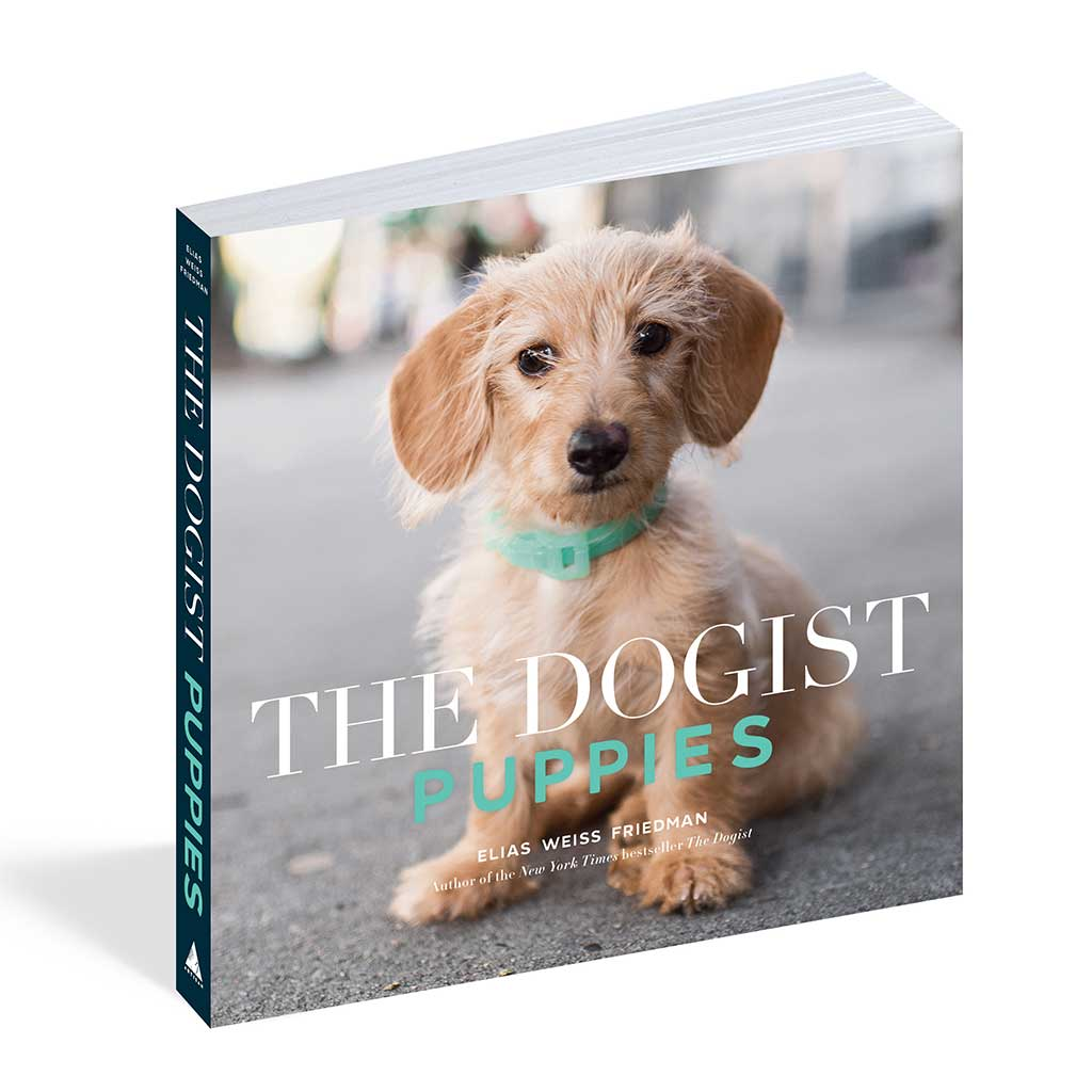 PUPPIES Softcover Book