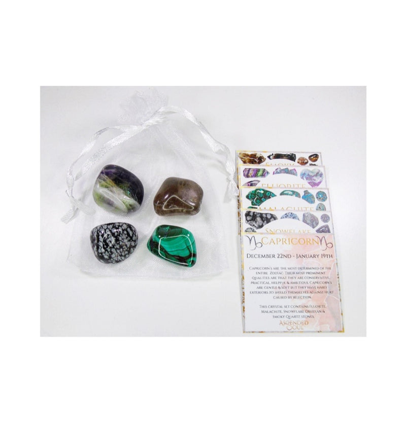 Capricorn Zodiac Crystal Bundle