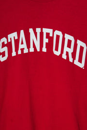 Daisy Street Vintage Champion T-Shirt with Stanford Print