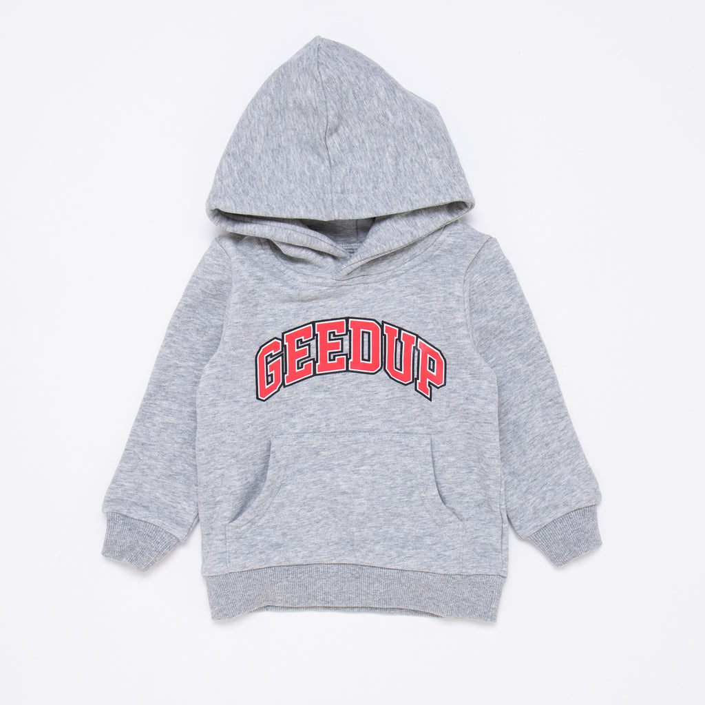 Kids Team Logo Hoody Grey