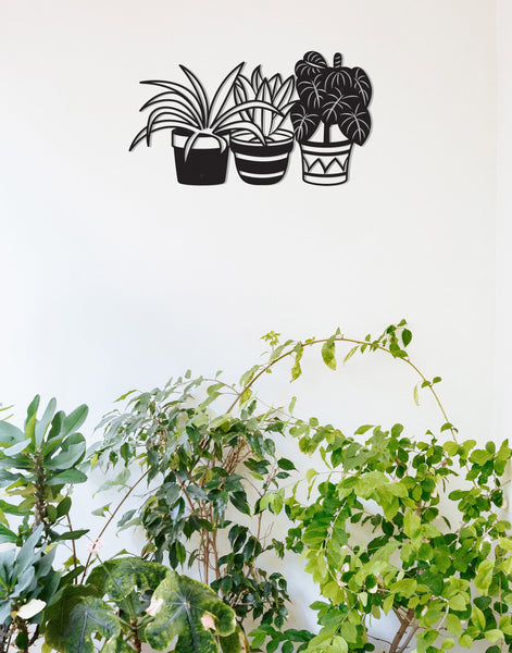 House plants (single)