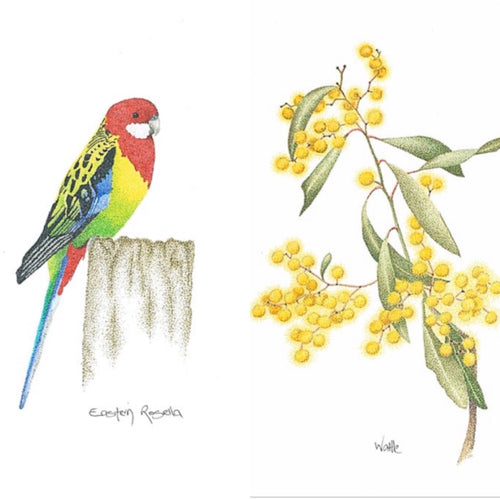 Eastern Rosella set of 2x - Australian range