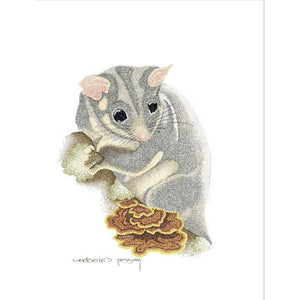 Sweet Koala and Possum set of 3x- Australian range