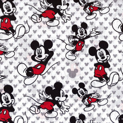 Disney Mickey Mouse Relaxing Remnant