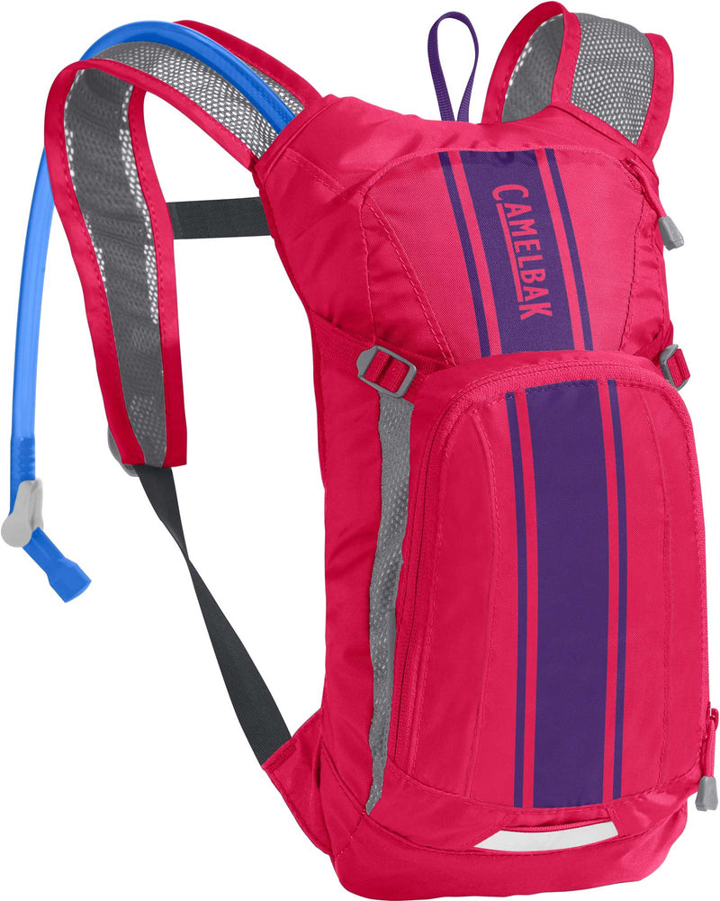 CamelBak Kids Mini M.U.L.E 50oz Hot Pink/Purple Stripe