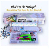 F&S Diamond Painting Kit Piercing Gaze Owl (Crystal Diamonds - Special Shapes)