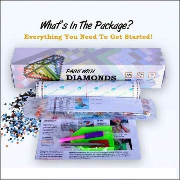 F&S Diamond Painting Kit Sunrise Peacock