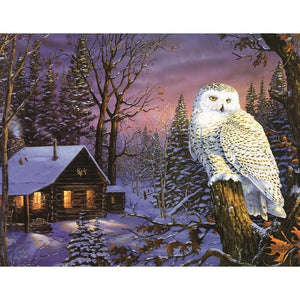 F&S Diamond Painting Store Owl in Landscape