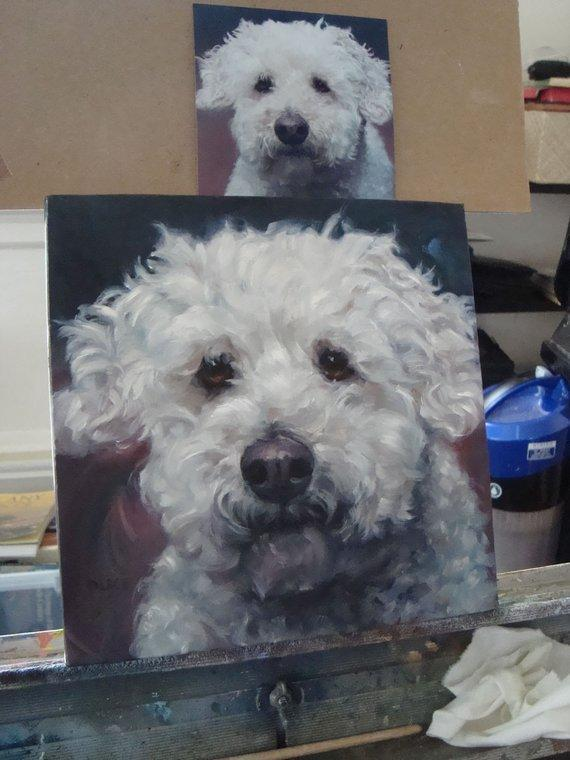 Personalized Oil Painting From Photos, handcraft art on Canvas-Show Case QIN101992-48
