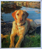 Personalized Oil Painting From Photos, handcraft art on Canvas-Show Case OKL101244-24