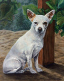 Personalized Oil Painting From Photos, handcraft art on Canvas-Show Case QKH101208-24