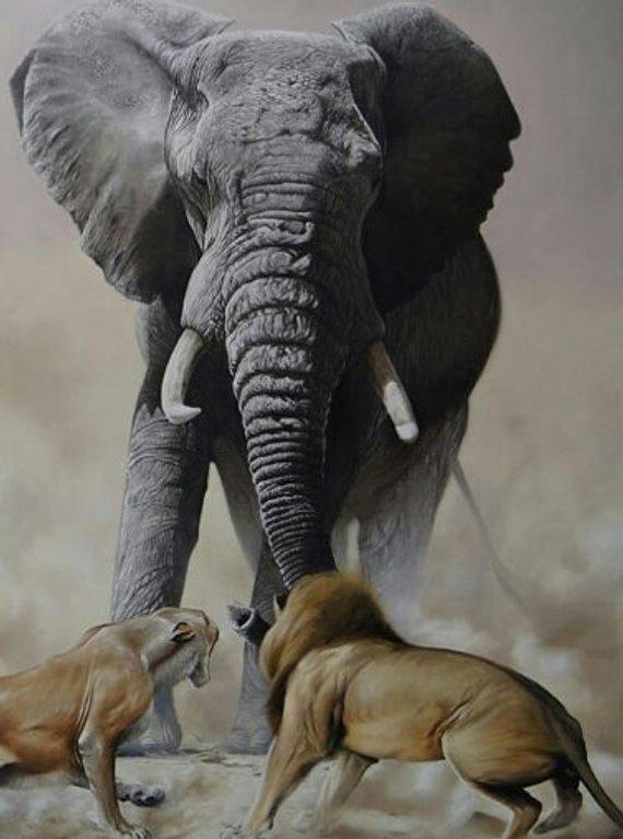 F&S Gift Store Elephant - Oil on canvas Realistic Painting Custom Made Portraits Made by photo - Animals, Pets, Portraits, Landscape