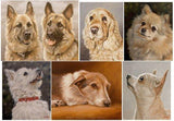 Personalized Oil Painting From Photos, handcraft art on Canvas-Show Case KGR102521-24
