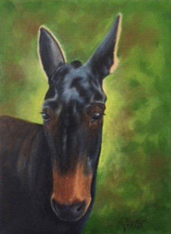 Personalized Oil Painting From Photos, handcraft art on Canvas-Show Case HJG101045-36