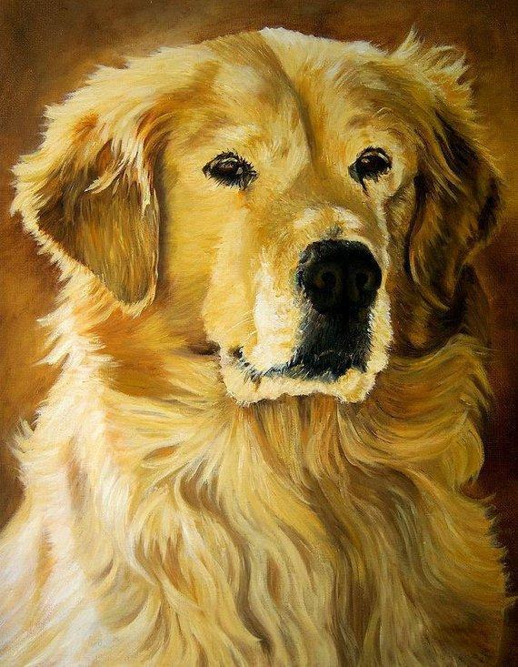 Personalized Oil Painting From Photos, handcraft art on Canvas-Show Case SPA102280-20