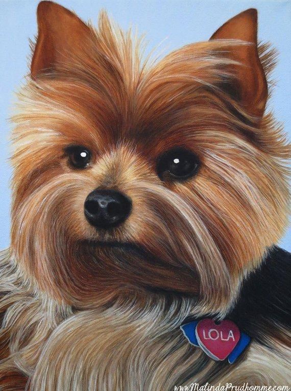 Personalized Oil Painting From Photos, handcraft art on Canvas-Show Case TPS101053-48