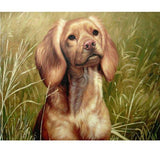Personalized Oil Painting From Photos, handcraft art on Canvas-Show Case JTO101565-36