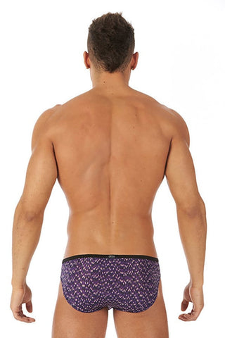 Gregg Homme Purple Celebrations Brief