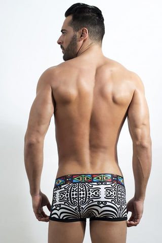 Discover Multicolored Maori Trunk