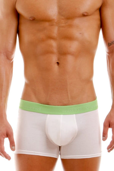 Modus Vivendi Bamboo Green Plain Boxer Brief