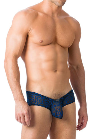 Gregg Homme Navy Appeal Trunk