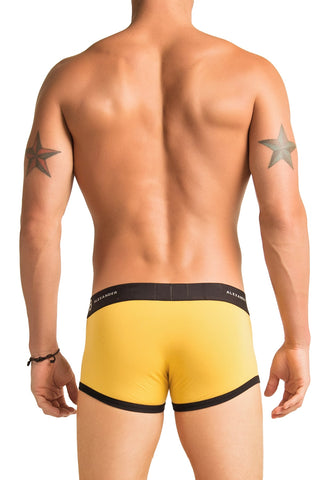 Alexander Cobb Yellow River Trunk