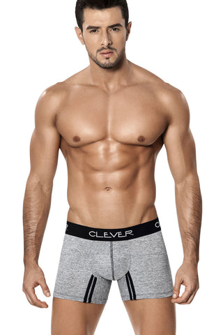 Clever Gray Arena Boxer Brief