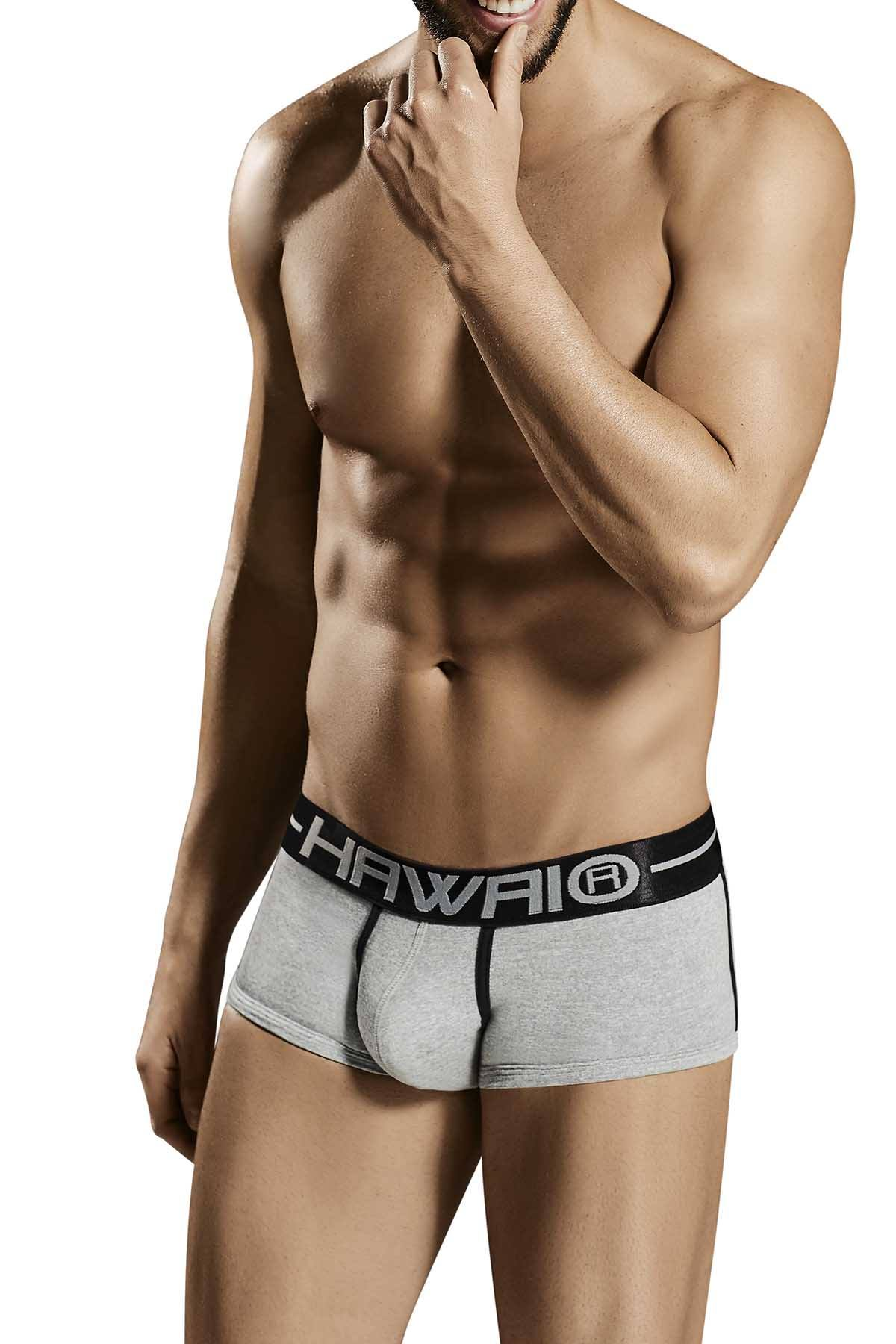 Hawai Grey 41707 Brief