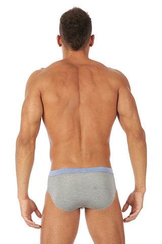 Gregg Homme Grey Modalounge Brief