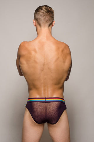 Pride Purple Barcelona Mesh Brief