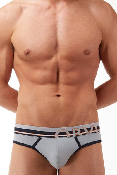 Obviously Grey Classic Hipster Brief