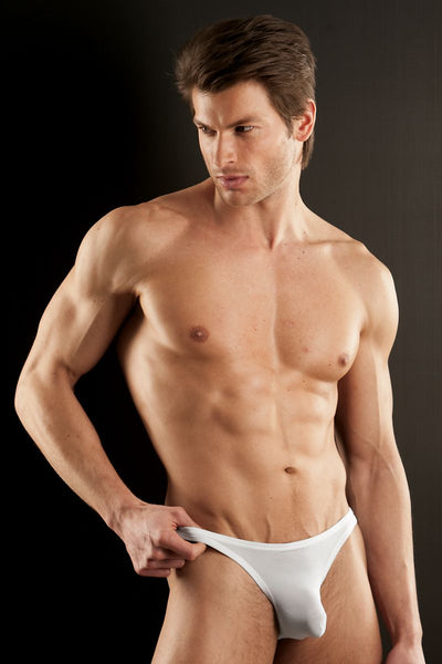 Extreme Collection White Sheer Brief - CheapUndies.com