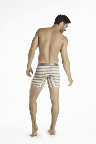 "Hawai Grey 12"" Vintage Stripe Boxer Brief"