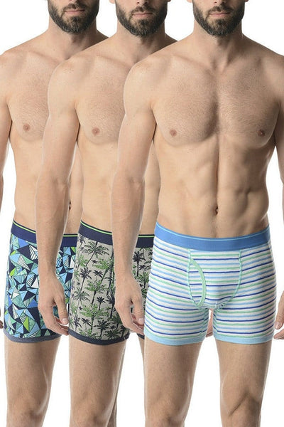 Bottoms Out Palm 3-Pack Trunk