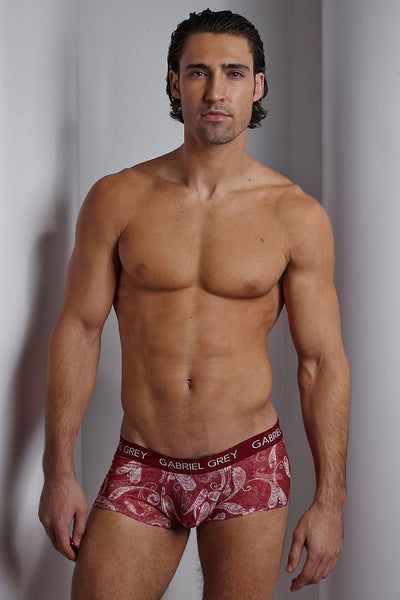 Gabriel Grey Red Paisley Boxer Brief - CheapUndies.com