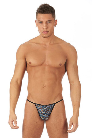 Gregg Homme Blue Celebrations String