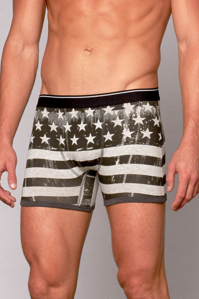 Stars N' Stripes Boxer Brief 3-Pack