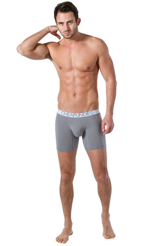 CheapUndies Grey Basic Long Trunk