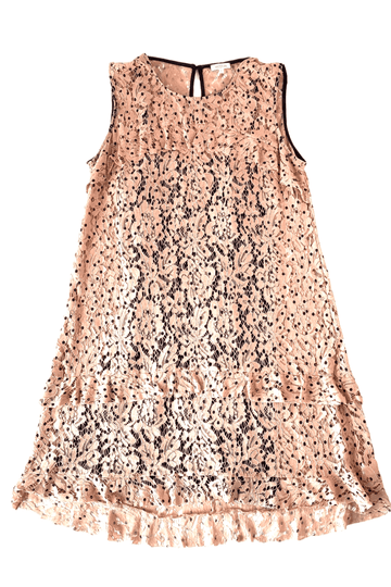 Weston Lace Polka Dot Blush Belle Ruffle Dress | XL | NEW