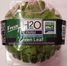 Load image into Gallery viewer, H2O Farms - Living Green Leaf Lettuce