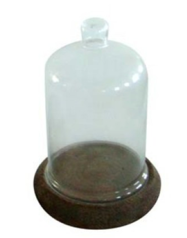 Cloche Dome Tall