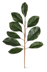 Stem Magnolia Leaf 24""