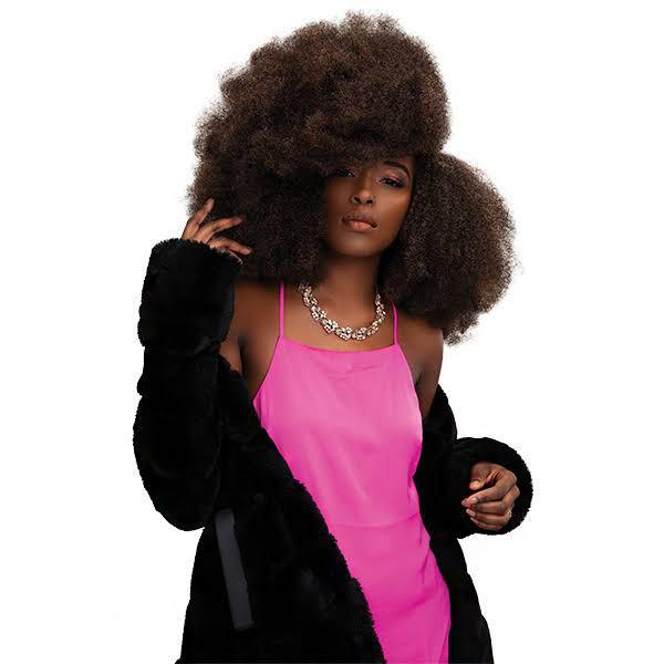 Janet Collection Kinky Krush Bulk Hair - BPolished Beauty Supply