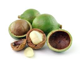 Benefits of Tamanu Oil for Teen Acne