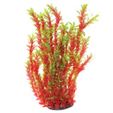 underwater-treasures-red-ludwigia-plant-20-inch