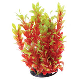 underwater-treasures-red-ludwigia-plant-12-inch